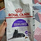 ROYAL CANIN Feline Sterilised 7-1500 gr: Amazon.es: Productos ...