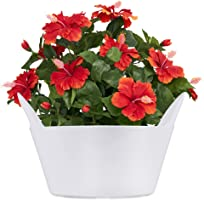 Sharpex Basket Type Flower Pot (White)