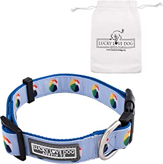 Lucky Love Dog | Blue Beach Ball Dog Collar - Stylish, Comfortable and Cute Dog Collar for Small Medium Large Dogs (Male and Female Dogs)