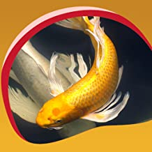 Koi Fish Live Wallpapers
