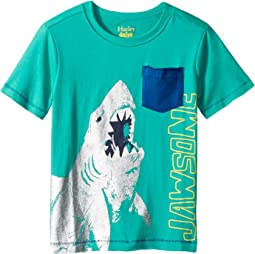 Hatley Kids Jawsome Austral Lagoon Tee (Toddler/Little Kids/Big Kids)