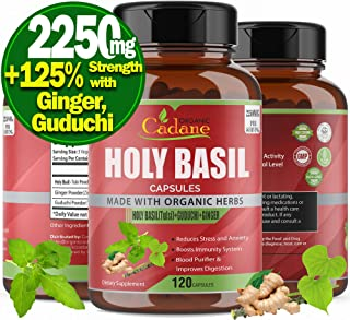 Organic Holy Basil Powder Capsules 2250mg with High Potency Extra Strength | Anti Anxiety Stress Relief Supplements | Depr...