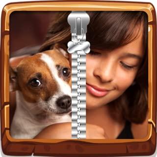 Mi zip lock mejor perro amigo