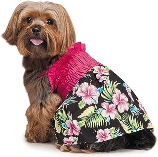 فستان هاوايان بريز صن دريس للكلاب من كاجوال كانين، مقاس صغير جدًا
