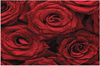 Hat&C Red and Black Romantic Eternal Symbol of Love Red Roses with Rain Drops On Petals Photo Print Ruby Mats Non Slip Rub...