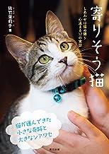 表紙: 寄りそう猫   佐竹 茉莉子