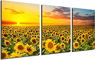 country sunflower paintings