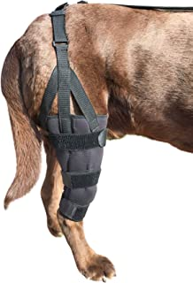Labra Dog Canine K9 Knee Stifle Brace Wrap Metal Hinged Flexible Support Treat ACL CCL Luxating Patella Cruciate Ligament Sprain Strain Tear Injuries