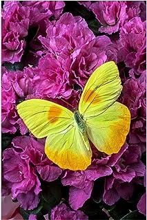 Diamante pittura farfalla a tutta larghezza diamante rotondo diamante ricamo animale punto croce strassmosaicoodecorazione...