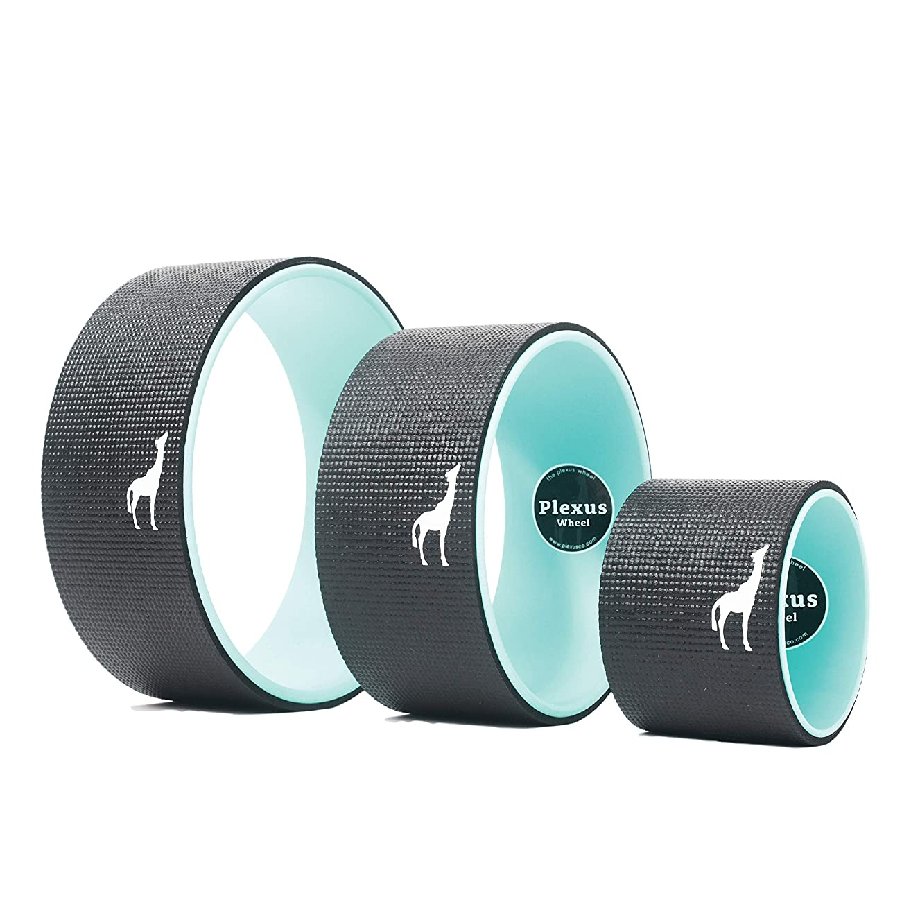 Plexus Wheel 3-Pack - Back Stretch Roller & Back Wheel for Yoga - Great for Classes Or in-Home Use - Optimal Back Roller Yoga Wheel for Back Pain Relief - (6 inch, 10 inch, 12 inch)