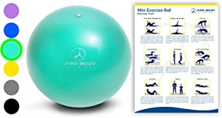 Mini Exercise Ball - 9 Inch Small Bender Ball for...