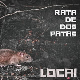 rata de dos patas mp3