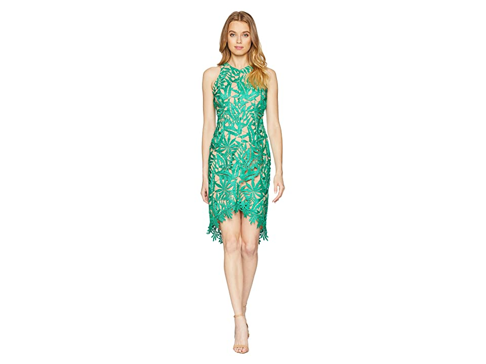 Adelyn Rae Neve Woven High-Low Lace Dress (Ivy/Nude) Women
