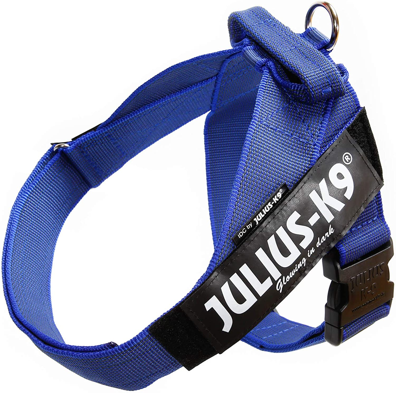 JULIUS -K9, 16503 -IDC -B -15, Color &G  IDC -Belbrio, Size: 3, Blue -G