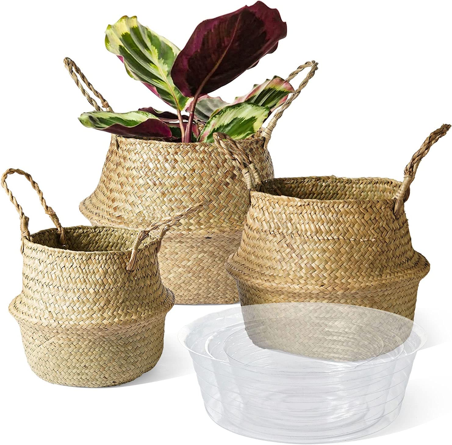 LE Max 74% OFF TAUCI Ranking TOP19 Plant Baskets with Seagrass Basket Tray Woven Planter