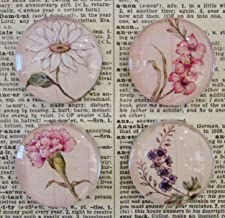 Floral Magnet Set of Four - Handcrafted Decorative Glass Magnet Set - Rare Earth Magnet - Daisy - Carnation - Larkspur - Gladiolus