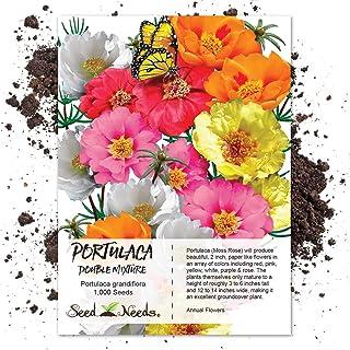 60e1dee51c93 Amazon.com  Bulb Collections - Flowers   Plants