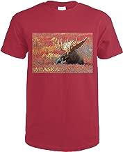 Alaska - Bull Moose 73267 (Cardinal Red T-Shirt Small)