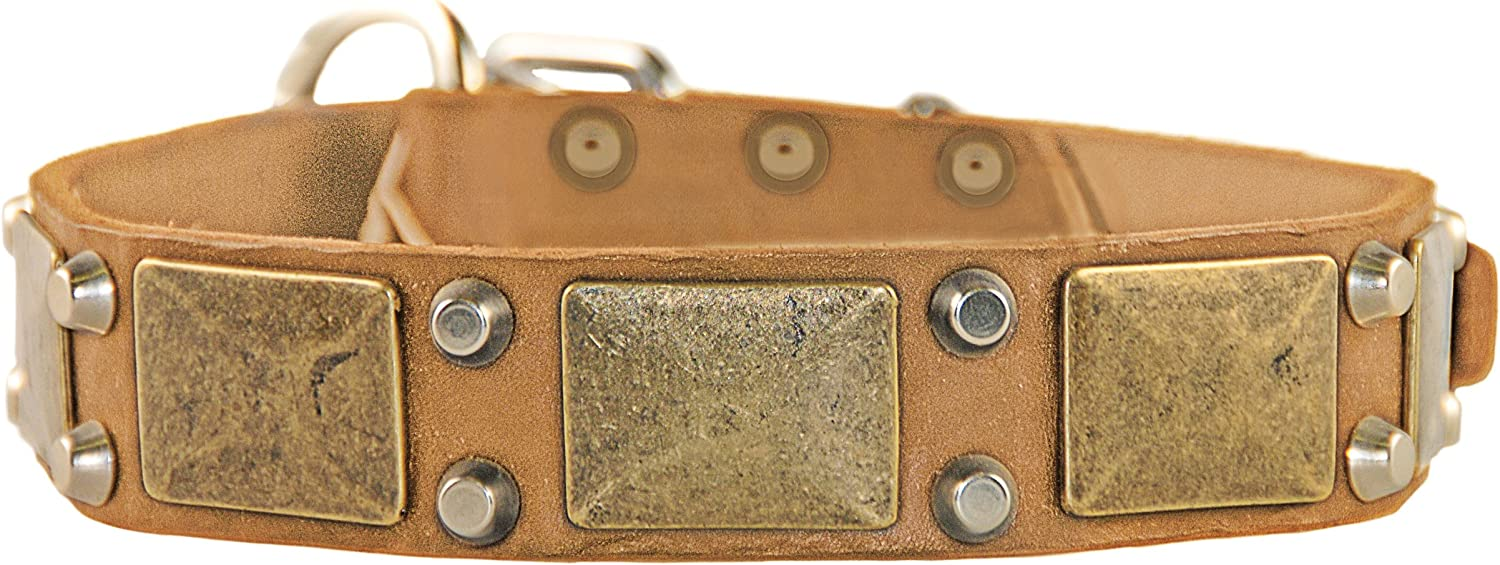 Dean and Tyler THE ANTIQUE , Dog Collar with Antiqued Brass Plates and Nickel Studs  Tan  Size 20Inch by 11 2Inch  Fits Neck 18Inch to 22Inch