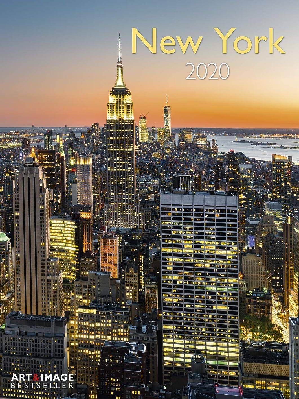 医師発音するはっきりしないNew York 2020 Posterkalender