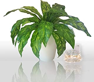 Vaxter Decor Chinese Evergreen Aglaonema Artificial Fern Plant Tropical Palm Hanging or Floor Faux Greenery – 2 PC Set for Home Patio Lawn Garden Indoor or Outdoor Planters – Pot not Included – GS002