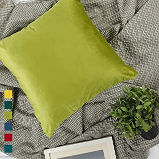 YINFUNG Sage Velvet Pillow Cover Chartreuse 18 Olive Lime Apple Green Moss Throw Pillow Cases Spring Cozy Home Decor Couch Bed Grass Green Pillow Cover Colorful 18 x 18 Soft Cozy 2 Set