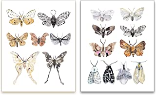 Watercolor Moths Art Prints - Vintage Nature Wall Art - Kitchen Wall Decor - SET of 2 - UNFRAMED - 8x10 Each