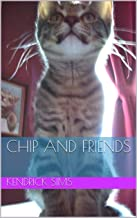 CHIP and Friends