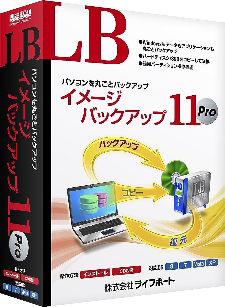 しなやかなアプローチ局LB イメージバックアップ11 Pro