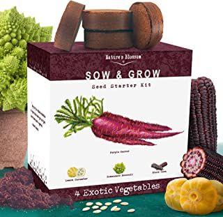 Nature's Blossom Exotic Vegetables Growing Kit. 4 Unique Plants To Grow From Seed. Beginner Gardeners Starter Set To Start...