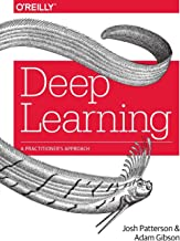 Deep Learning: A Practitioner`s Approach