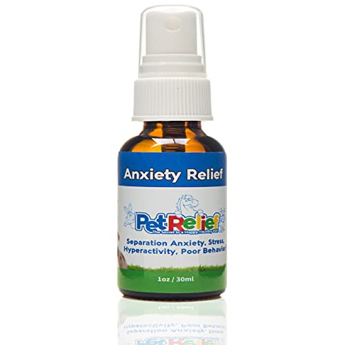 Meds With Therapy Calm Aggression In >> Amazon Com Dog Anxiety Relief Soothes Dogs With Separation