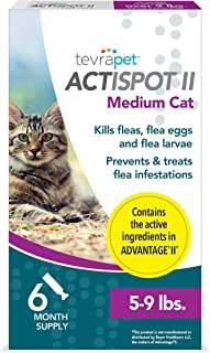 cost of flea treatment for cats