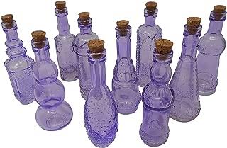 BULK PARADISE Purple Vintage Glass Bottles with Corks, Assorted Shapes, 5 Inch Tall, Set of 10 Bottles