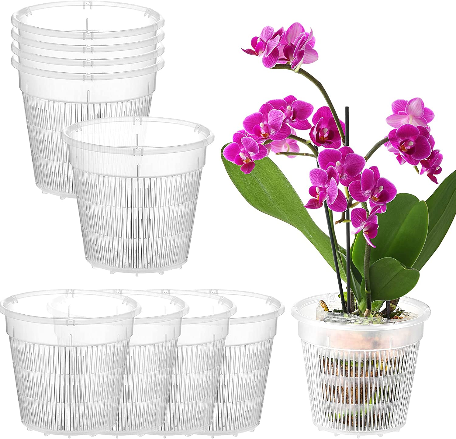 10 Pieces Ranking TOP14 Clear Attention brand Orchid Pot Set Slotted Breathable P