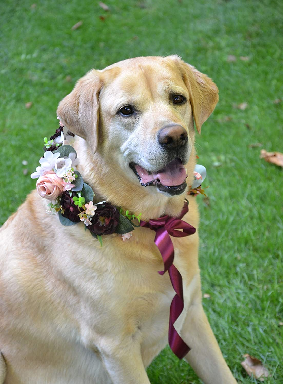 Dog Collar Floral Pet Wedding Flower Max 66% OFF Elegant Pink Peach Crown B Burgundy