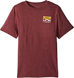 Vans Kids - Grizzly Mountain T-Shirt (Big Kids)