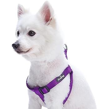 Pawtitas Adiestramiento Arn/és para Perro o Cahorro Reflectante Peque/ño Lila