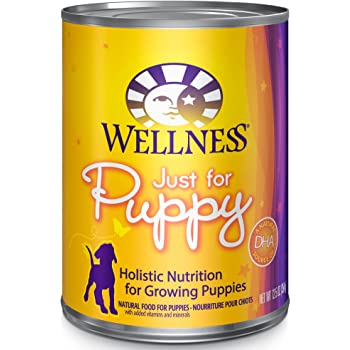 Wellness Complete Health Natural Wet Canned Dog Food Puppy Chicken & Salmon
