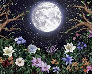 Moon Garden Paint by Numbers for Adults Night Landscape with Colorful Plants DIY Paint by Number Floral DIY Oil Painting Boho Oil Canvas Painting for Kids, 16x20 inch (Black, Frameless)