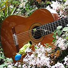 Best joy to the world acoustic guitar Reviews