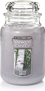 Yankee Candle Large Jar Candle, Silver Birch