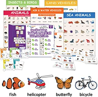 Little Champion Reader Teach Core Vocabulary Toddler Learning Kit 4 (Vehicles & Animals) - Land Vehicles, Sea Animals, Air Vehicles, Water Vehicles, Farm Animals, Wild Animals, Birds and Insects