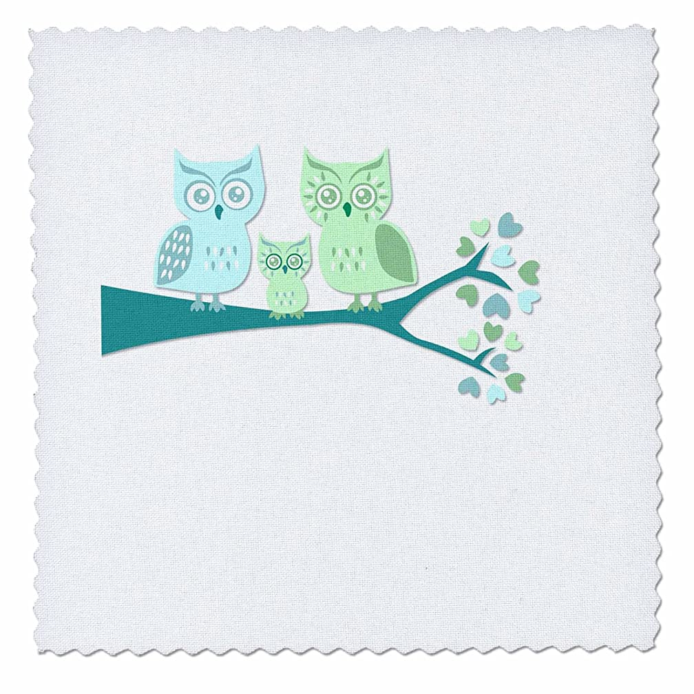 3dRose qs_128533_7 Cute Owl Family with Baby Boy Blue and Green Quilt Square, 18 by 18-Inch