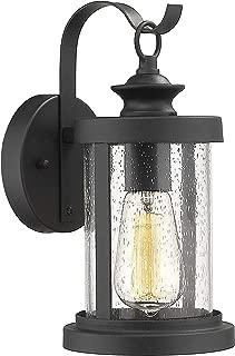 Emliviar Outdoor Wall Lighting Fixture, Indoor Wall Mount Light in Black Finish with Seeded Glass Shade, 1810-EW1