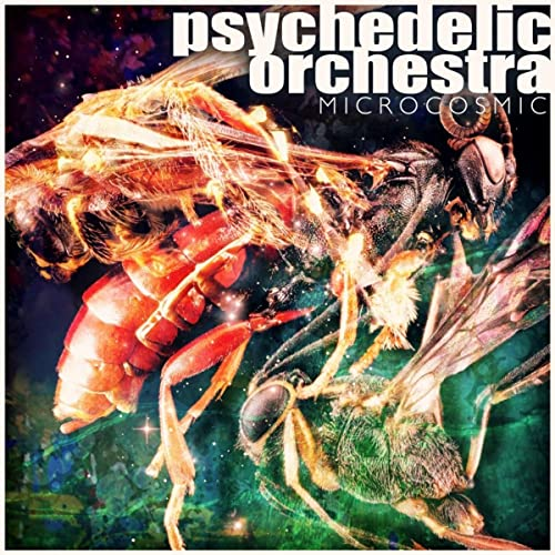 Amazon.com: Apollo 17 (Original Mix): Psychedelic Orchestra ...