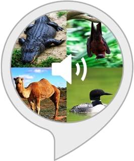 animal sounds alexa