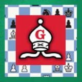 Entusiasta del Ajedrez - Chess Enthusiast