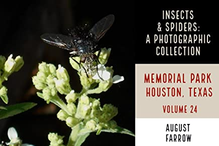 Insects & Arachnids: A Photographic Collection: Memorial Park: Houston Texas - Volume 24 (Arthropods of Memorial Park) (English Edition)