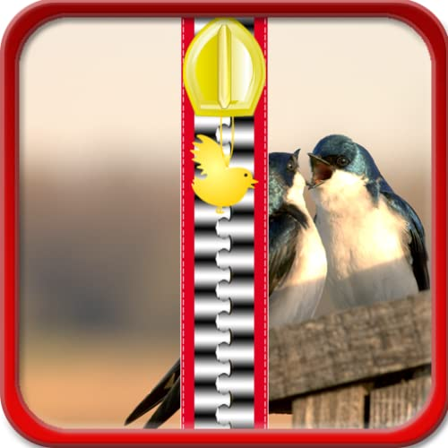 Pantalla de los pájaros del amor de la cremallera de bloqueo